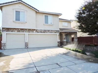 Manteca Single Family Home For Sale: 434 Pestana Avenue