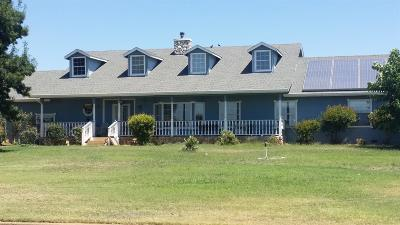 Bangor, Berry Creek, Chico, Clipper Mills, Gridley, Oroville Single Family Home For Sale: 1067 Lone Tree