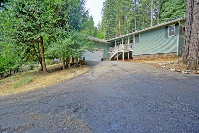Pollock Pines Single Family Home For Sale: 3165 Gold Ridge Trail