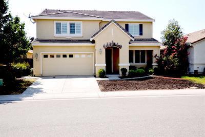 Single Family Home For Sale: 598 Tara Bella Drive