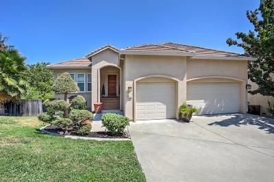 Fair Oaks  Single Family Home For Sale: 4212 Olga Lane