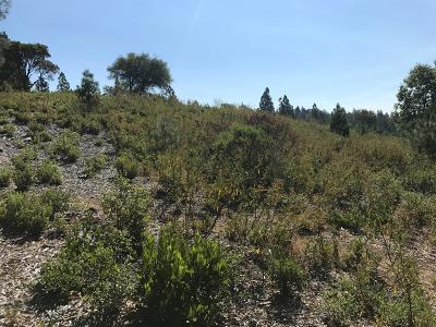 Placerville Residential Lots & Land For Sale: Bear Rock Road