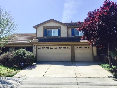 Elk Grove Single Family Home For Sale: 8492 Vista Brook Drive