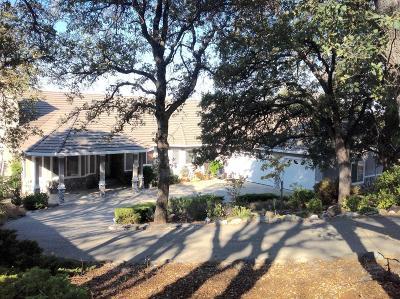 Auburn Single Family Home For Sale: 9380 Upper Valley