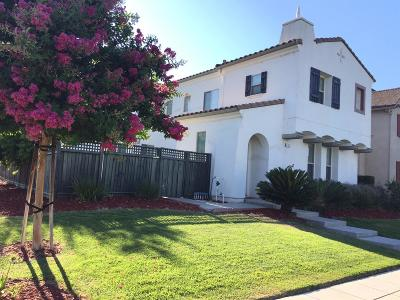 Tracy Single Family Home For Sale: 683 Castle Haven Drive