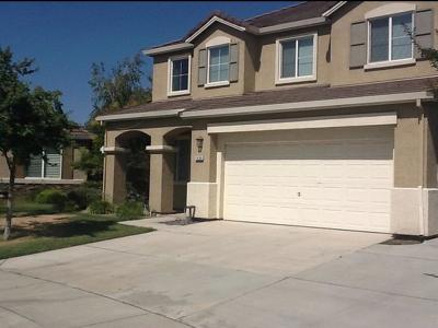 Manteca Single Family Home For Sale: 1424 Garold Lane