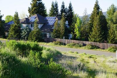 Cameron Park Single Family Home For Sale: 2871 Vista Verde Drive