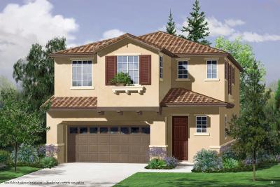 Roseville Single Family Home For Sale: 2033 Sycamore Grove Lane