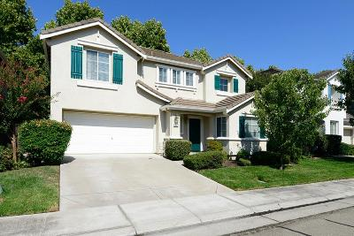 Single Family Home For Sale: 5027 Timepiece Circle