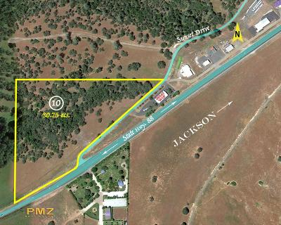 Amador County Commercial Lots & Land For Sale: 10551 North Sunset Drive