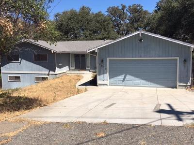 Cameron Park Single Family Home For Sale: 3913 Los Santos Drive