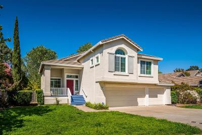 Folsom Single Family Home For Sale: 361 Hansen Circle