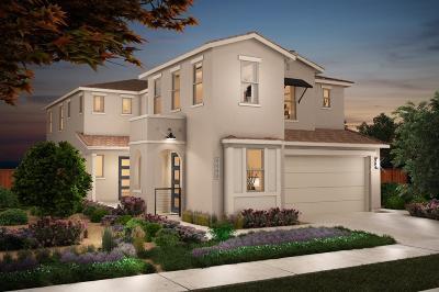 Sacramento Single Family Home For Sale: 4484 English Elm Street