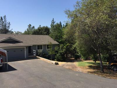 Placerville Single Family Home For Sale: 3540 Nordic Way