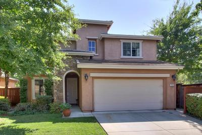 Rocklin Single Family Home For Sale: 2163 Sterling Drive