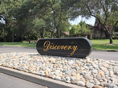 Gold River Single Family Home For Sale: 1813 Discovery Village Lane