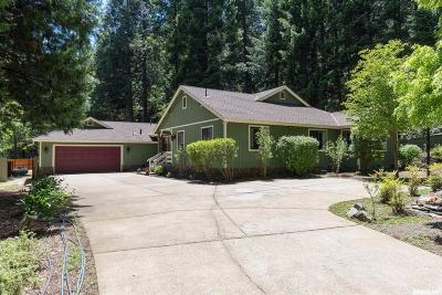 Pollock Pines Single Family Home For Sale: 4580 Jenkinson Circle