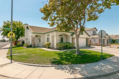 Manteca Single Family Home For Sale: 1662 Hastings Drive