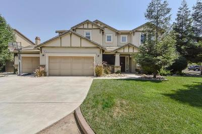 Turlock Single Family Home For Sale: 3800 Biltmore Drive