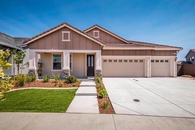 Roseville Single Family Home For Sale: 3081 Autumn Leaves Drive
