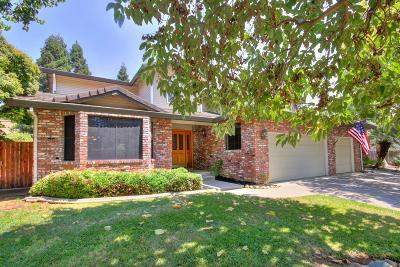 Elk Grove Single Family Home For Sale: 9491 Porto Rosa Drive