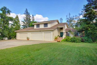 El Dorado Hills Single Family Home For Sale: 702 Sterling Court