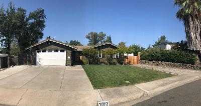 Rocklin Single Family Home For Sale: 3010 Union Street