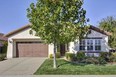 Roseville Single Family Home For Sale: 2024 Brixham Drive