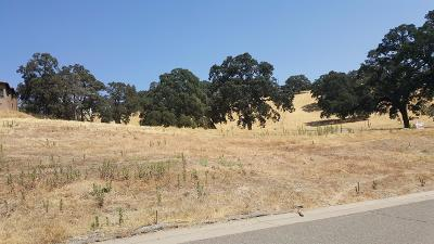 Folsom Residential Lots & Land For Sale: 1510 Gionata Way