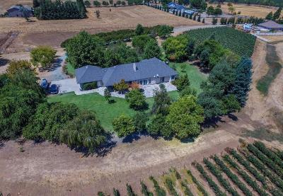 San Joaquin County, Stanislaus County Single Family Home For Sale: 19820 Atkins Road