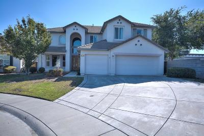 Elk Grove Single Family Home For Sale: 9551 Fox Wind Court
