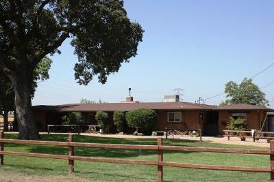Lodi Single Family Home For Sale: 15465 Linn Road