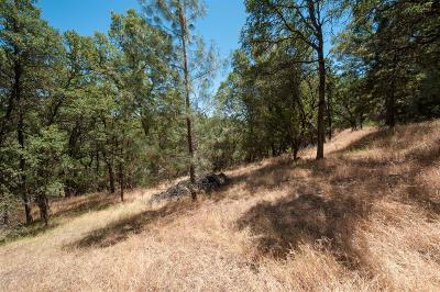 Garden Valley CA Residential Lots & Land For Sale: $35,000