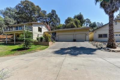 El Dorado Hills Single Family Home For Sale: 1196 Malcolm Dixon Road