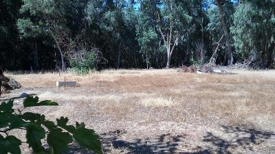 Yolo County Residential Lots & Land For Sale: North 7451 County Road 91 B