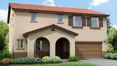 Sacramento Single Family Home For Sale: 12 Kitaj Court