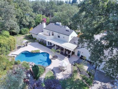 Fair Oaks Single Family Home For Sale: 8360 Manana Way