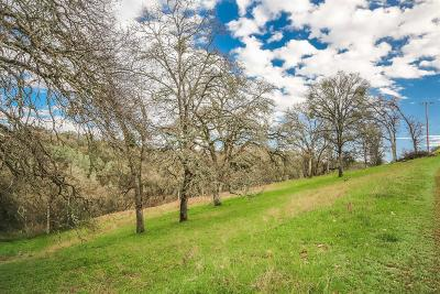El Dorado Residential Lots & Land For Sale: Sodalite Street