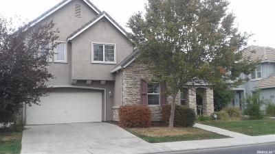 Patterson Single Family Home For Sale: 1445 Oasis Lane