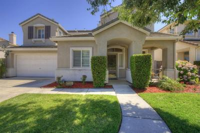 Manteca Single Family Home For Sale: 770 Heartland Drive