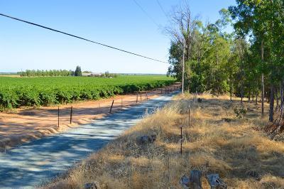 Sacramento County Commercial Lots & Land For Sale: Borden Road