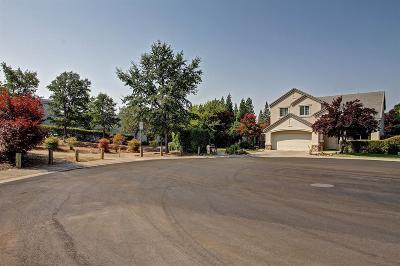 Folsom Single Family Home For Sale: 122 Freese Court
