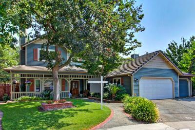 Elk Grove Single Family Home For Sale: 9287 Porto Vista Court