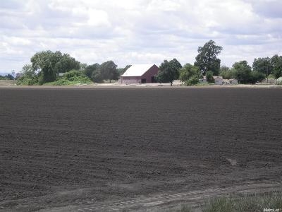 Sutter County Commercial Lots & Land For Sale: 24746 Gifford Road