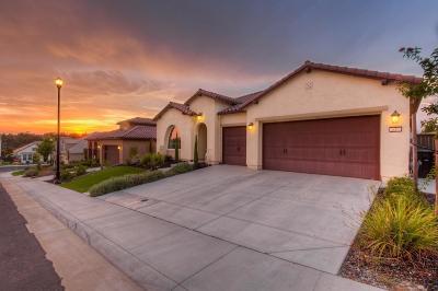 Roseville Single Family Home For Sale: 117 Blazing Star Court