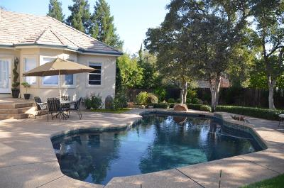 El Dorado Hills Single Family Home For Sale: 4031 Albert Circle