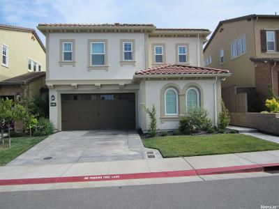 El Dorado Hills Single Family Home For Sale: 7257 Santorini Way