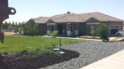 Sacramento County Single Family Home For Sale: 12760 Rimfire Drive