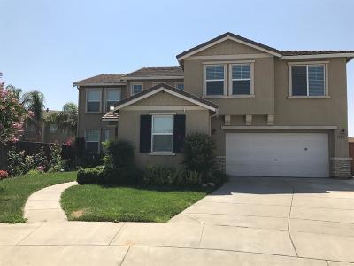 Ceres Single Family Home For Sale: 3500 Attika Street