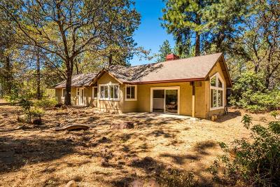 Meadow Vista Single Family Home For Sale: 3175 Sugar Ridge Road